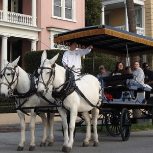 Palmetto Carriage Tours Coupons