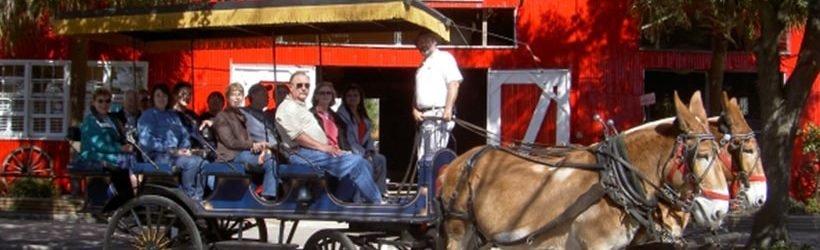 Palmetto Carriage Tours, Charleston